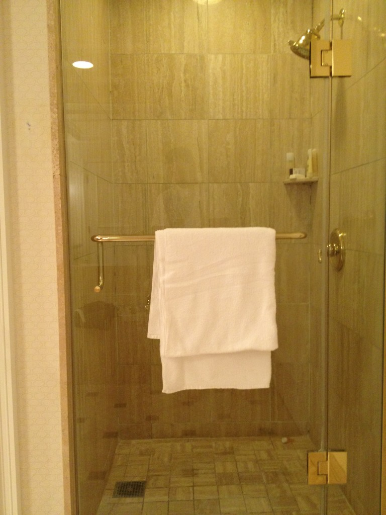 The separate stand-alone shower.