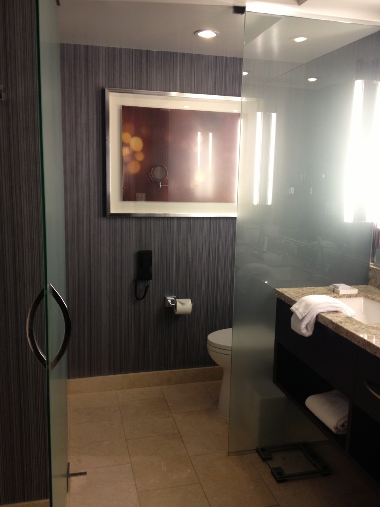 Aria Bathroom 2