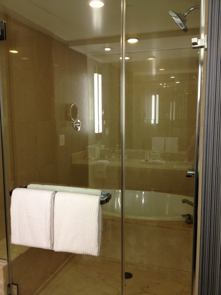 Aria Bathroom 3