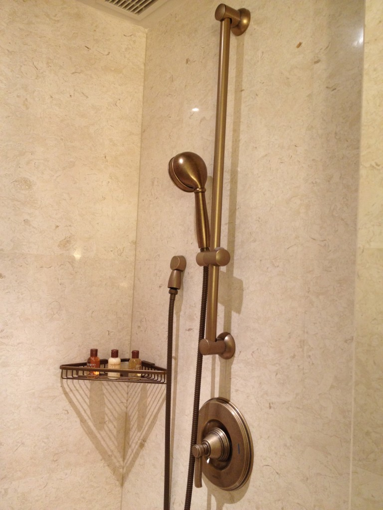 The shower head. There was a sitting area in the shower as well.