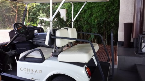 A bad picture of one of the golf carts.